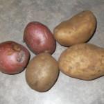 5-potatoes-092509